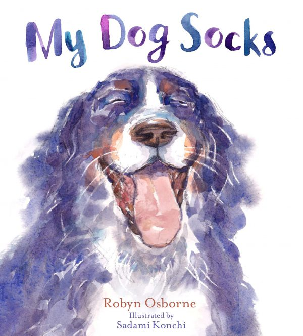 My Dog Socks