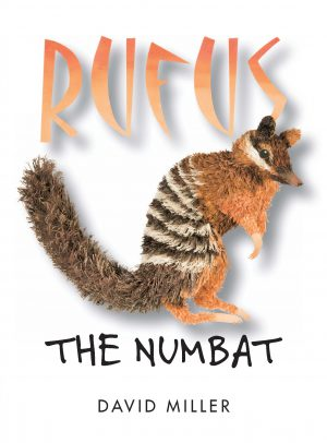 Rufus the Numbat